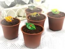 盆栽蛋糕-日式巧克力