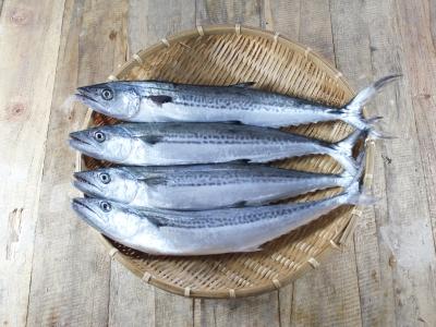 A007-2野生現撈白北魚150g~200g