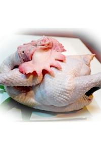 生鮮全公雞1.95kg