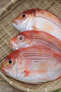 A027-3野生現撈赤鯮魚120g~150g